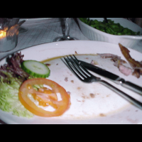 A plate of food shown 5 seconds after placed on the table.